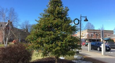 durham christmas tree - kim haas